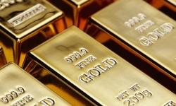Rozdily v obchodovani forexu a zlata