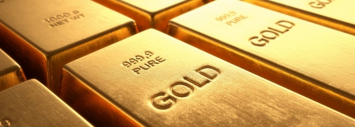 gold NP FX24