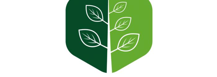 woodseeds_logo